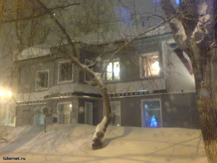 Фотография: Снежок, пользователя: Morgan