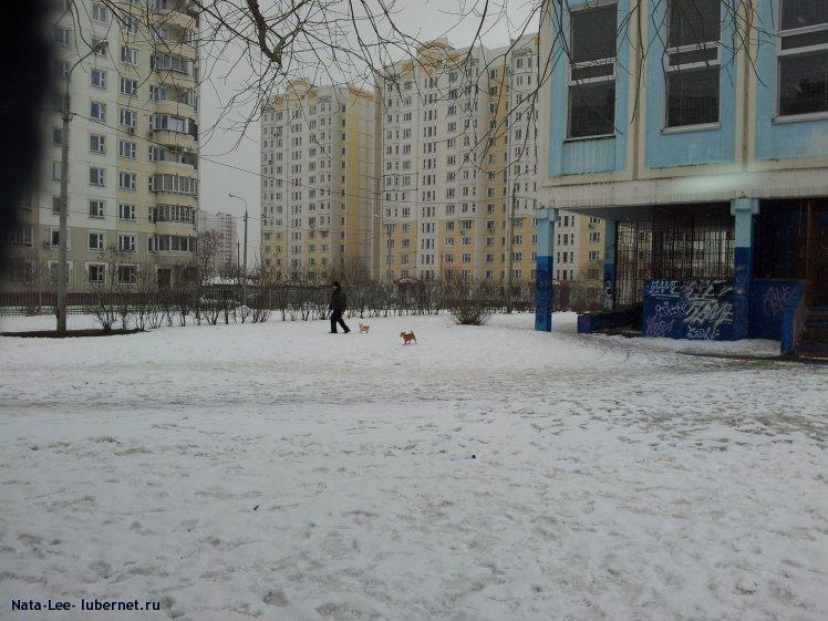 Фотография: 2012-03-20 14.47.22.jpg, пользователя: Nata-Lee