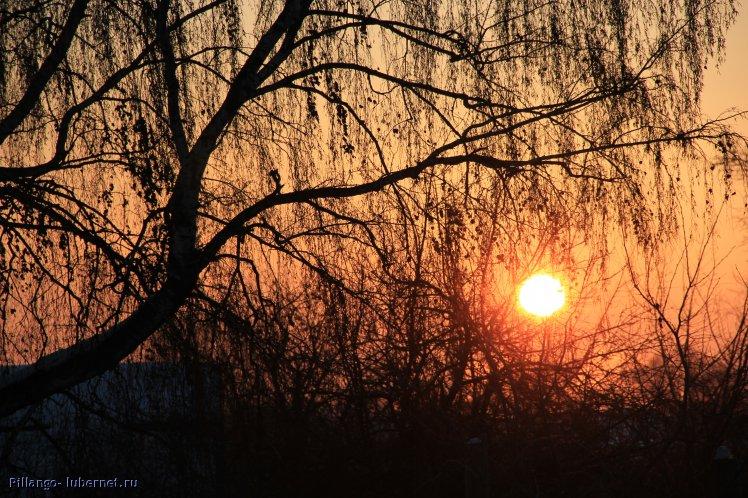 Фотография: IMG_2171.JPG, пользователя: Pillango