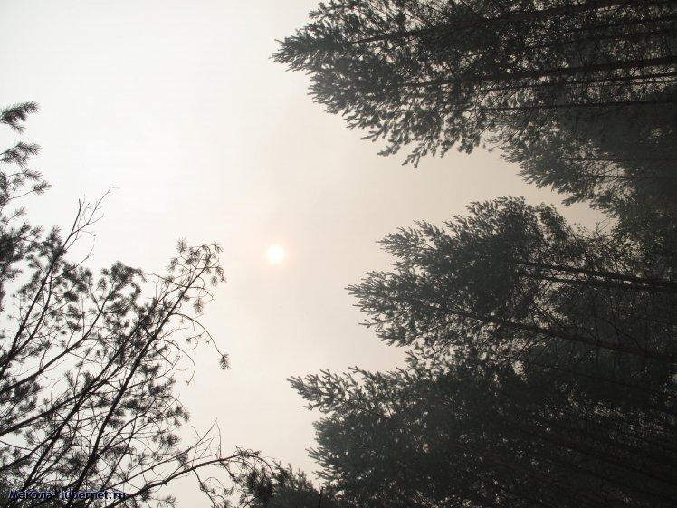 Фотография: Небо днем, пользователя: Мекола
