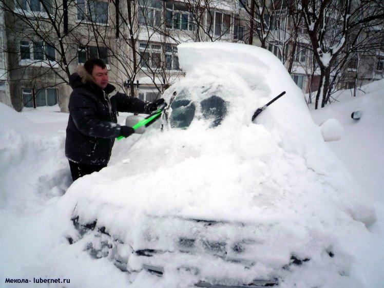 Фотография: Снежок, пользователя: Мекола