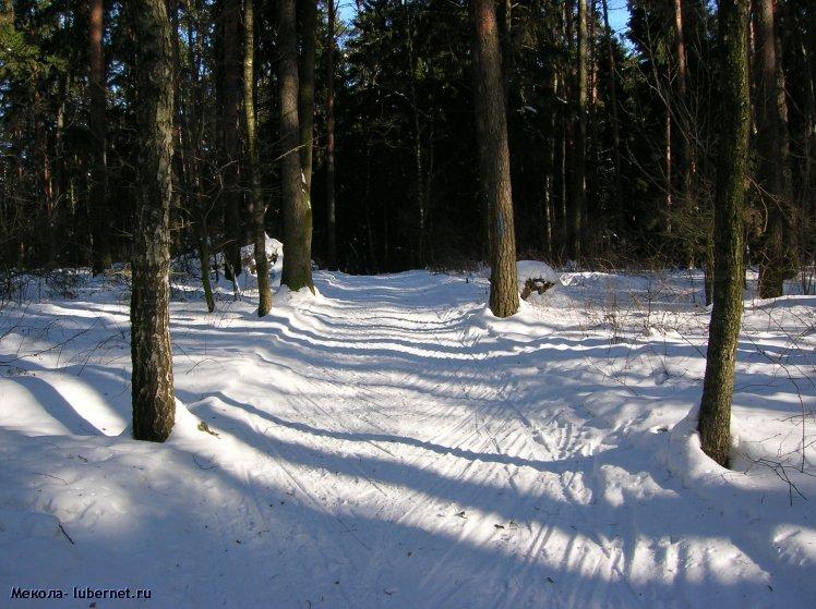 Фотография: Лыжная дорога..., пользователя: Мекола