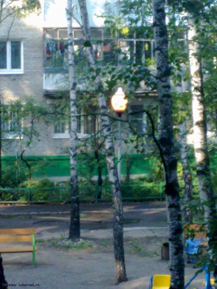 Фотография: 01092011249.jpg, пользователя: Lorelay