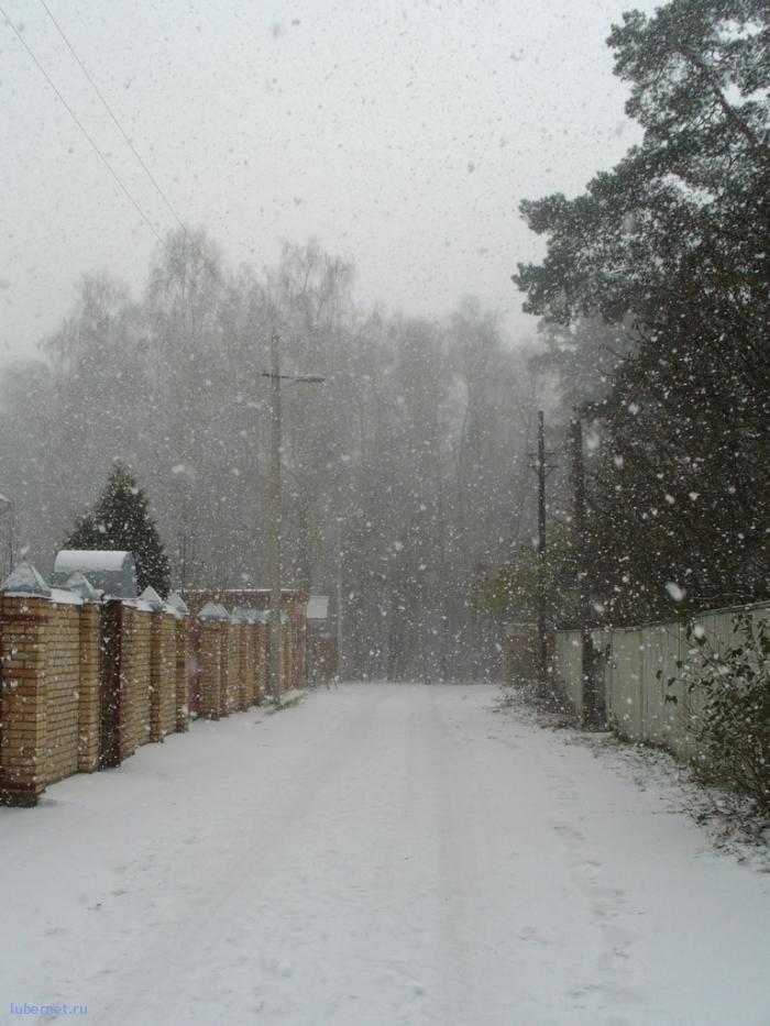 Фотография: первые снегопады, пользователя: Tais