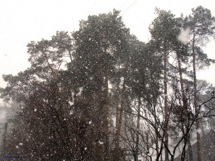 Фотография: снегопад_3, пользователя: Tais