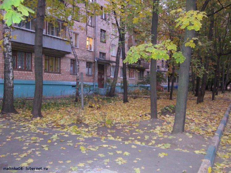 Фотография: Мой двор.JPG, пользователя: malinka08
