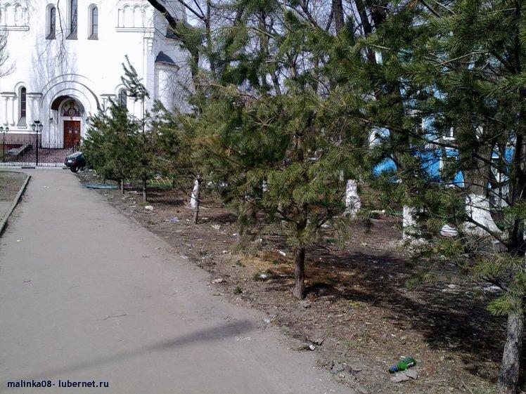 Фотография: 17042011564.jpg, пользователя: malinka08