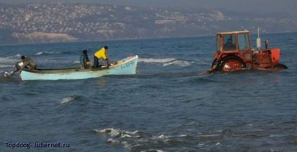 Фотография: Рыбная ловля.jpg, пользователя: Topdoog