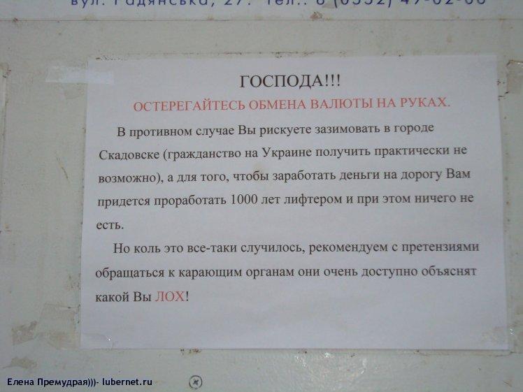 Фотография: Увидела объявление в Скадовске__, пользователя: Елена Премудрая)))