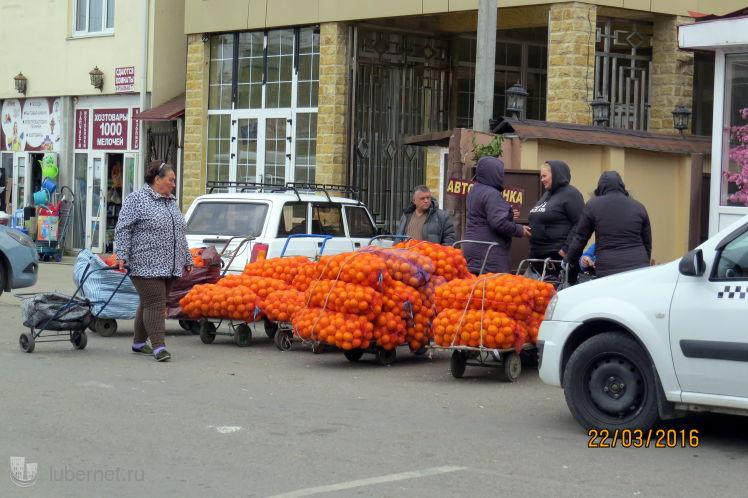 Фотография: Свеженькие апельсины, пользователя: 7fonia