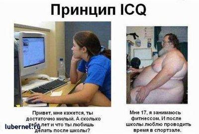 Фотография: Принцип ICQ, и не только, пользователя: 7fonia