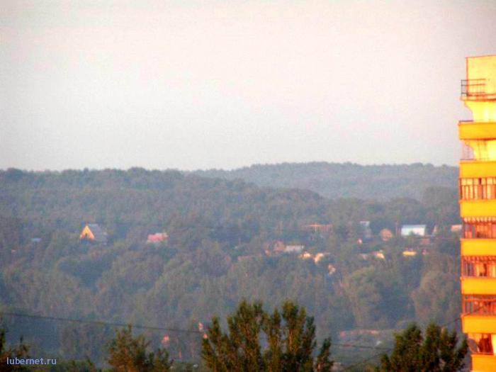 Фотография: Лес, Котельники, пользователя: 7fonia