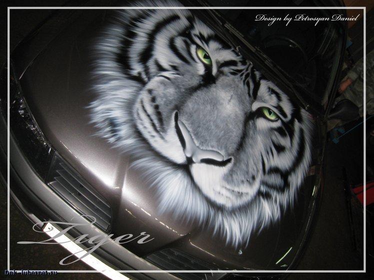 Фотография: Mitsubushi carisma-Tiger-капот 3.jpg, пользователя: Dnk