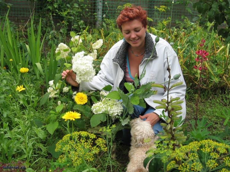 Фотография: Обожаю цветы и свою дачу, пользователя: gorka