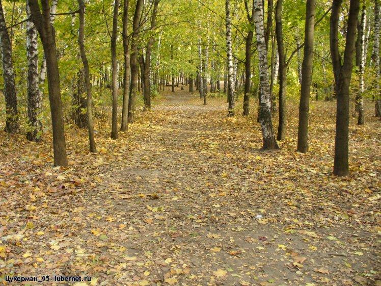 Фотография: P1000054 (Наташинский парк).JPG, пользователя: Цукерман
