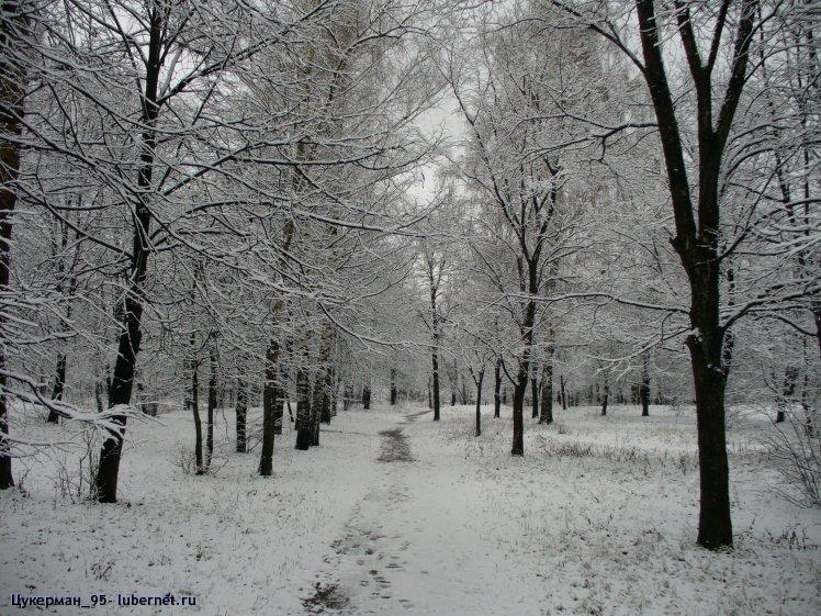 Фотография: P1000332 (Наташинский парк).JPG, пользователя: Цукерман