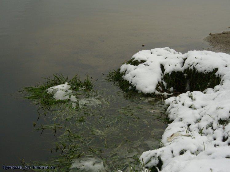Фотография: P1000374 (Наташинский парк).JPG, пользователя: Цукерман