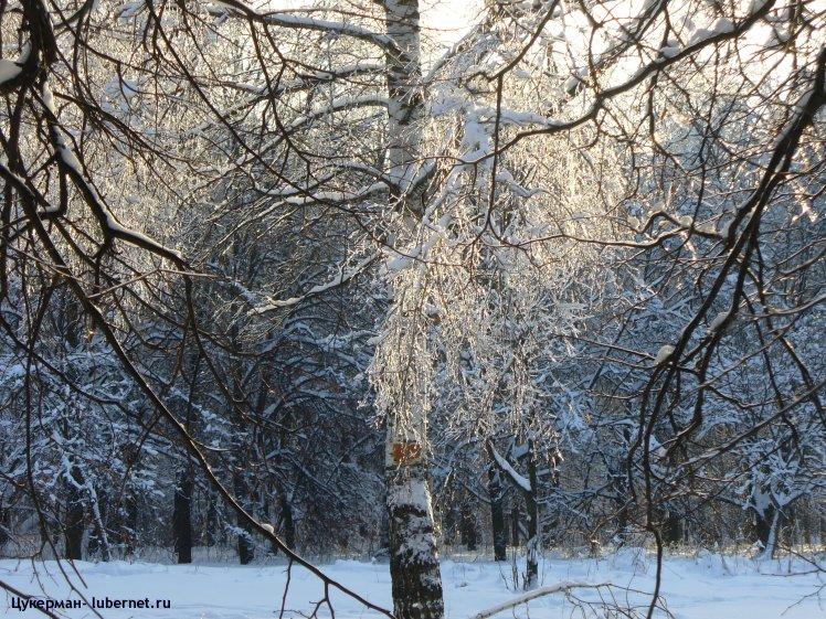 Фотография: P1010994 (Наташинский парк).JPG, пользователя: Цукерман