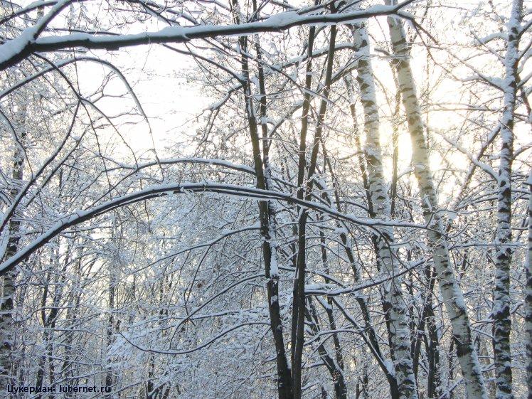 Фотография: P1010997 (Наташинский парк).JPG, пользователя: Цукерман