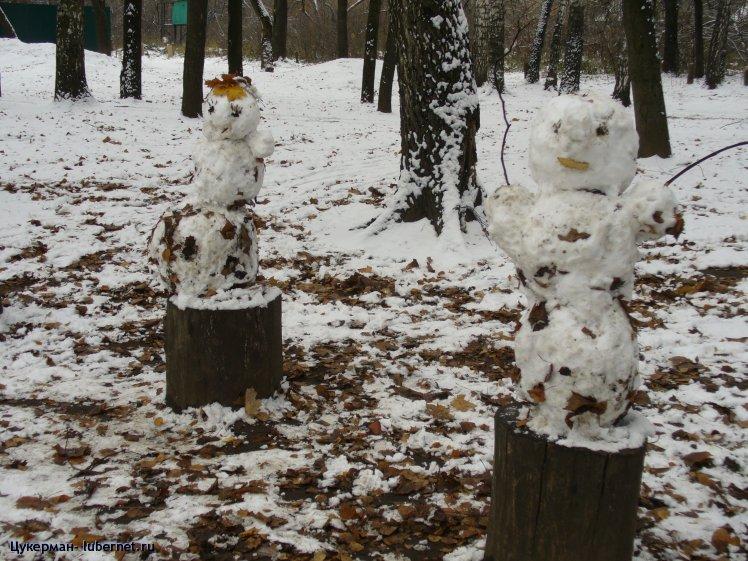 Фотография: Снеговики прилетели. К зиме. (Наташинский парк), пользователя: Цукерман