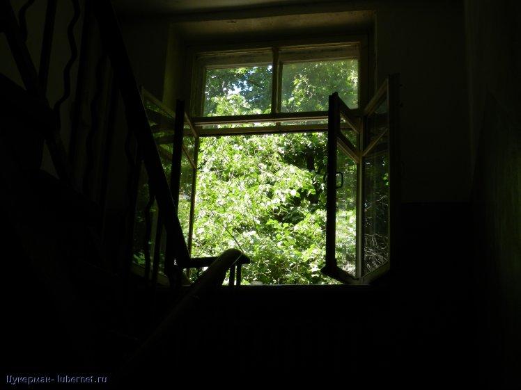 Фотография: Мои четыре окна. Лето., пользователя: Цукерман