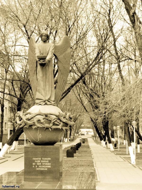 Фотография: Памяти павших..., пользователя: expo